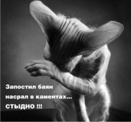 http://korzik.net/uploads/posts/2008-04/1207472224_q03.jpg
