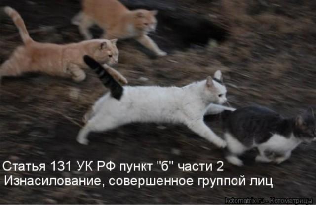 http://korzik.net/uploads/posts/2008-04/1207472232_q02.jpg