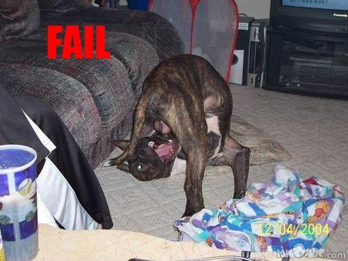 Неудачи :)
