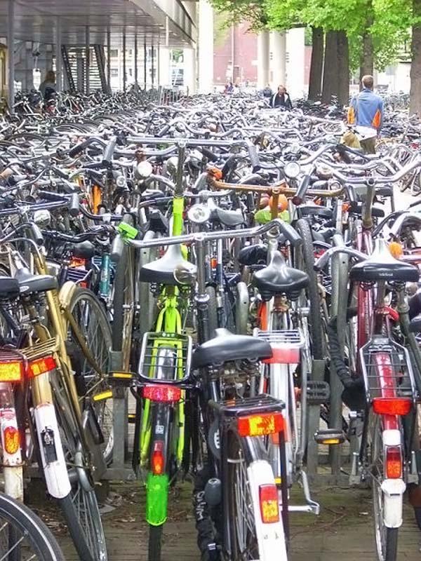 Велосипеды на паркове :)