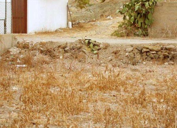 Как быстро вы нашли кота? :)