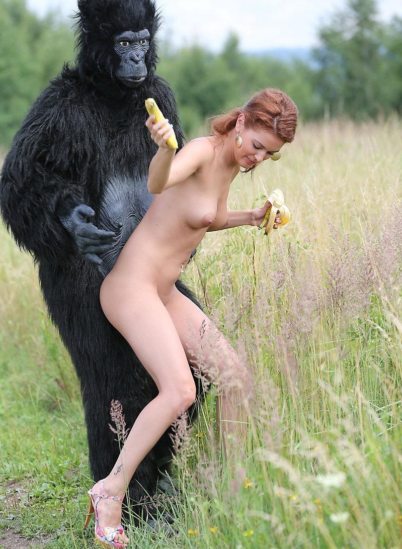 Gorilla Fucking A Girl