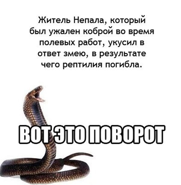 1379938620_podborka_01.jpg