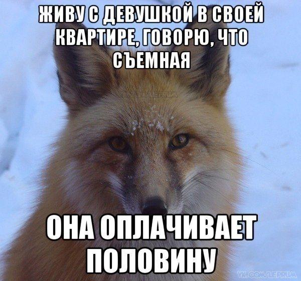 1391519135_podborka_55.jpg