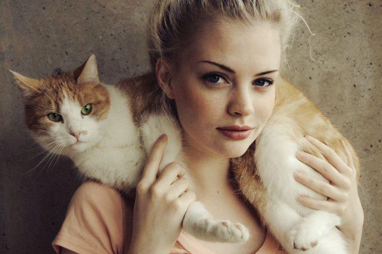 Вся суть интернета – девушки и котики
