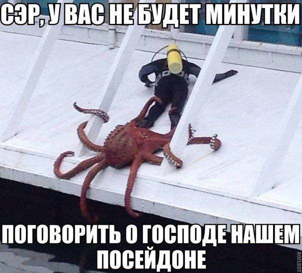 1400140093_podborka_83.jpg