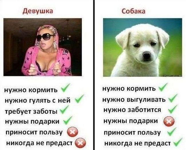 1412246680_podborka_81.jpg