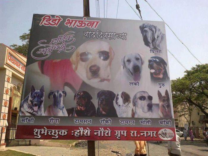 Только в Индии