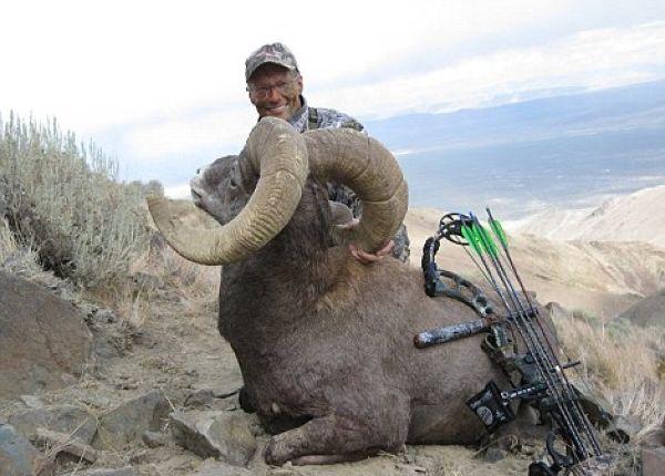 Дантист-браконьер застрелил самого красивого льва Зимбабве