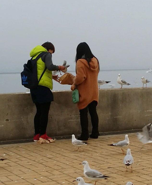 Китаянки ловят чаек для еды