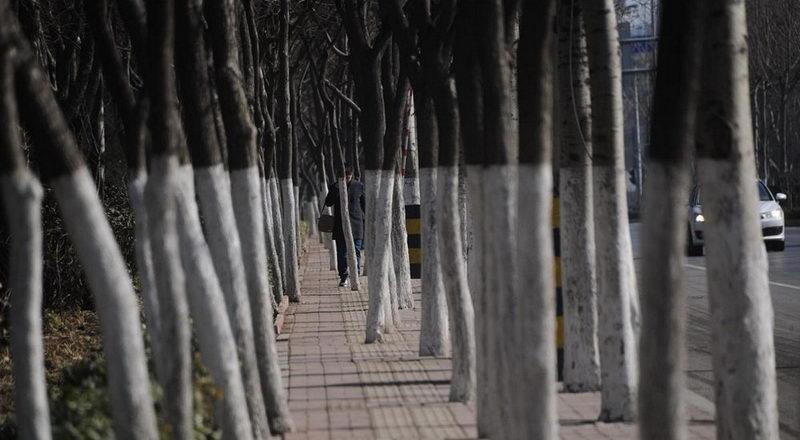 Ничего необычного. Просто пешеходный тротуар в Китае
