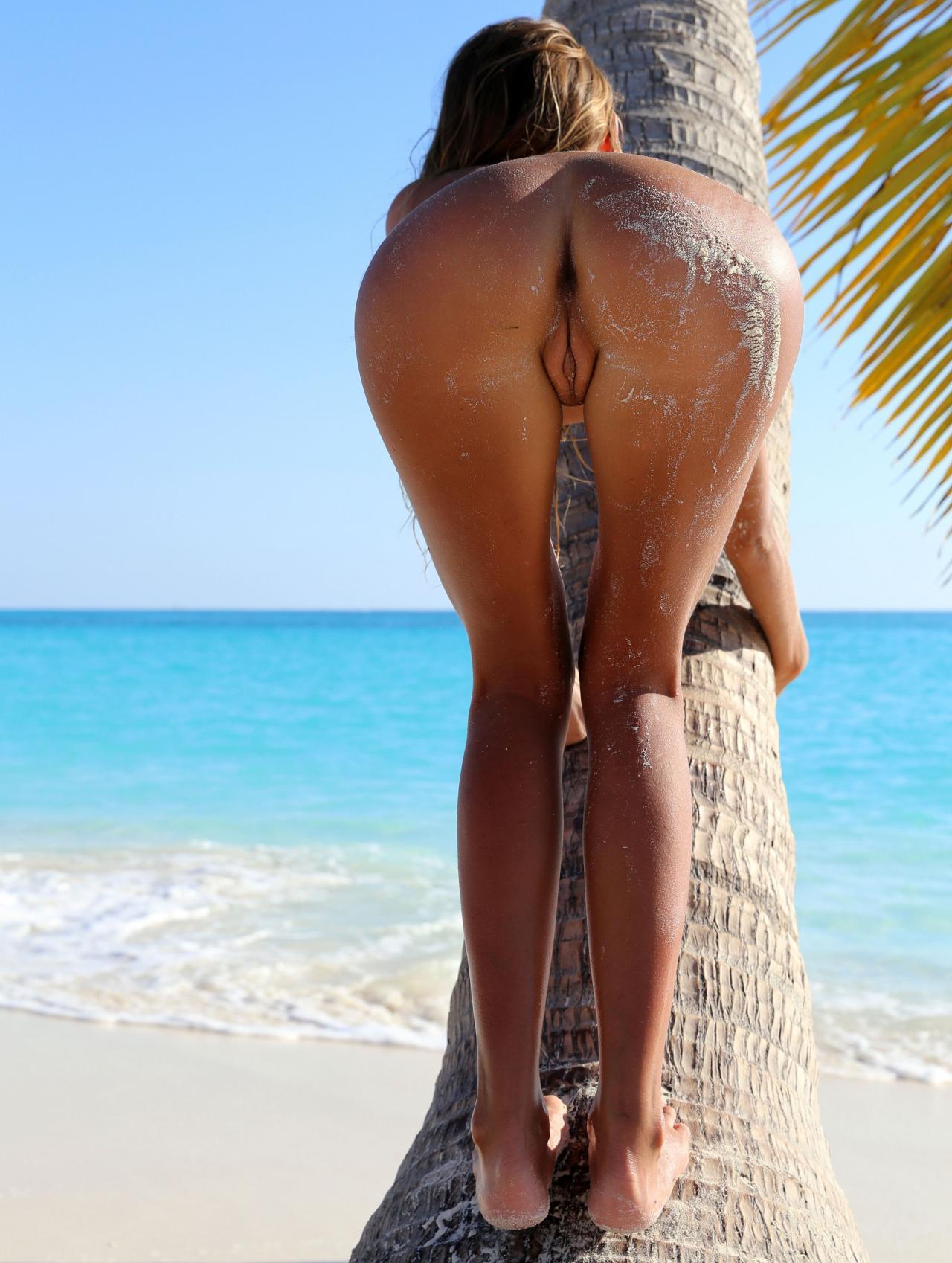 За кокосом полезла