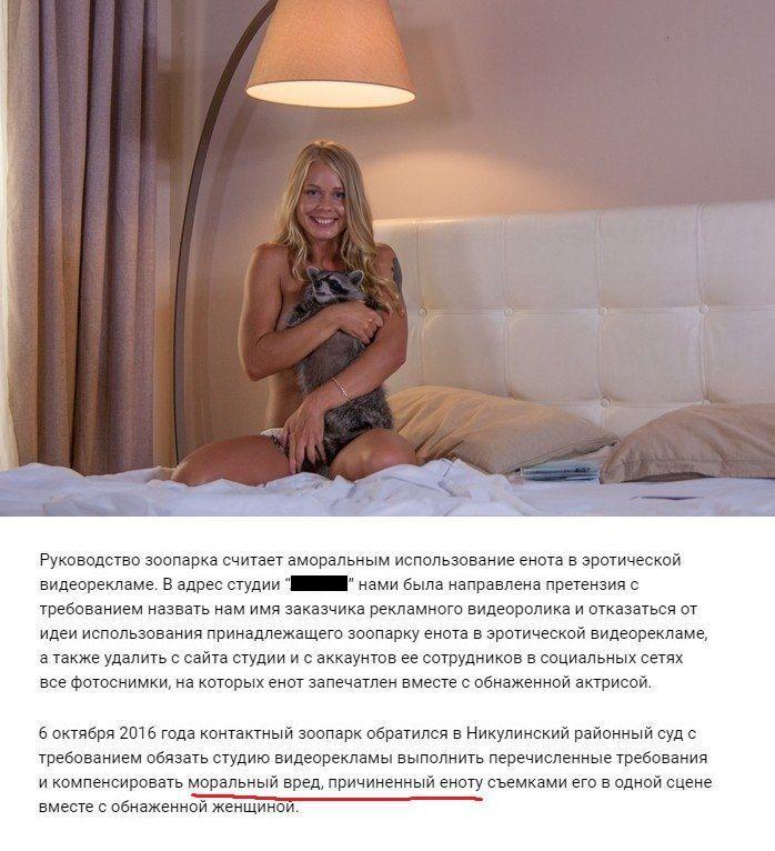 Московский зоопарк требует возместить моральный вред еноту, участвовавшему в эротической фотосессии