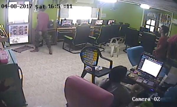 Змея напала на посетителей интернет-кафе в Таиланде
