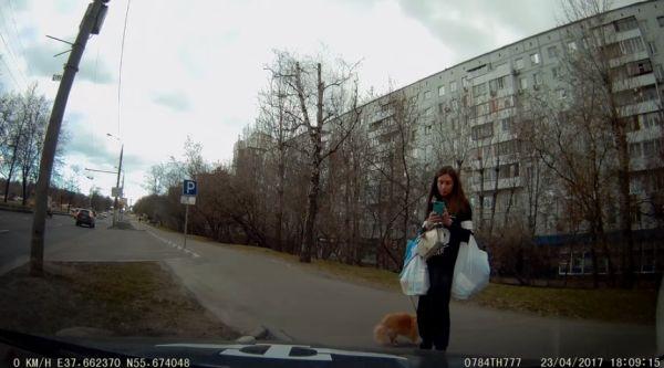 Таксист не взял животное с животным