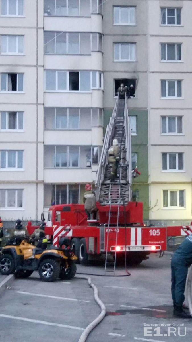 При пожаре в Екатеринбурге мужчина отказался покидать горящую квартиру, но выкинул из окна кошку