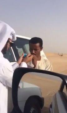 Приход от катарской махорочки