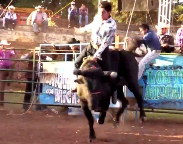 Бык знатно оторвался на сельском фестивале в Мексике