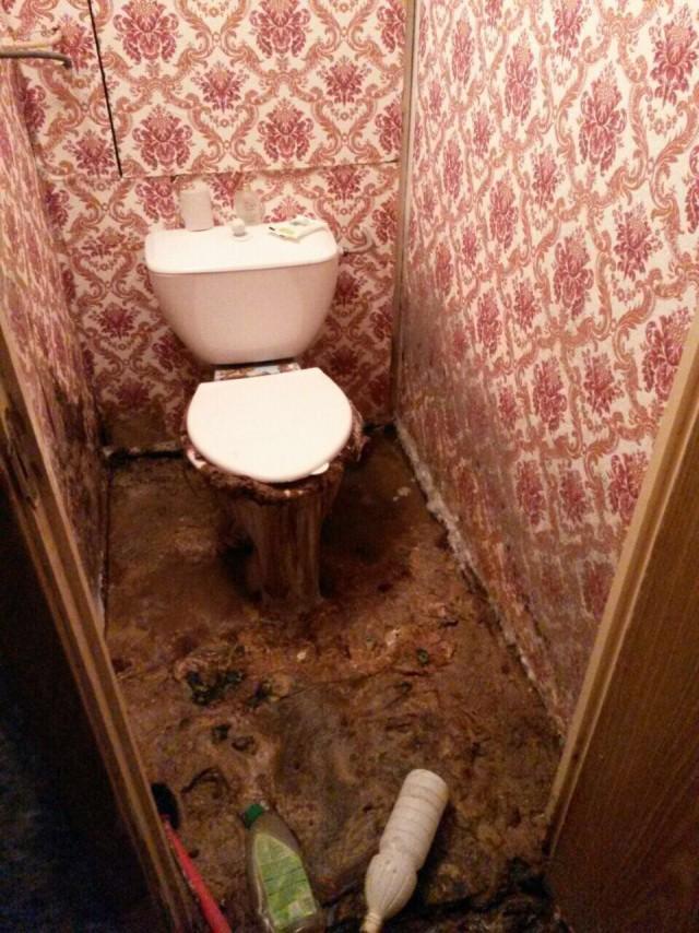 Что может быть когда вы уезжаете на дачу на месяц, а соседи засорили канализационную трубу