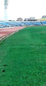 Ремонт футбольного поля стадиона Шинник окончен досрочно