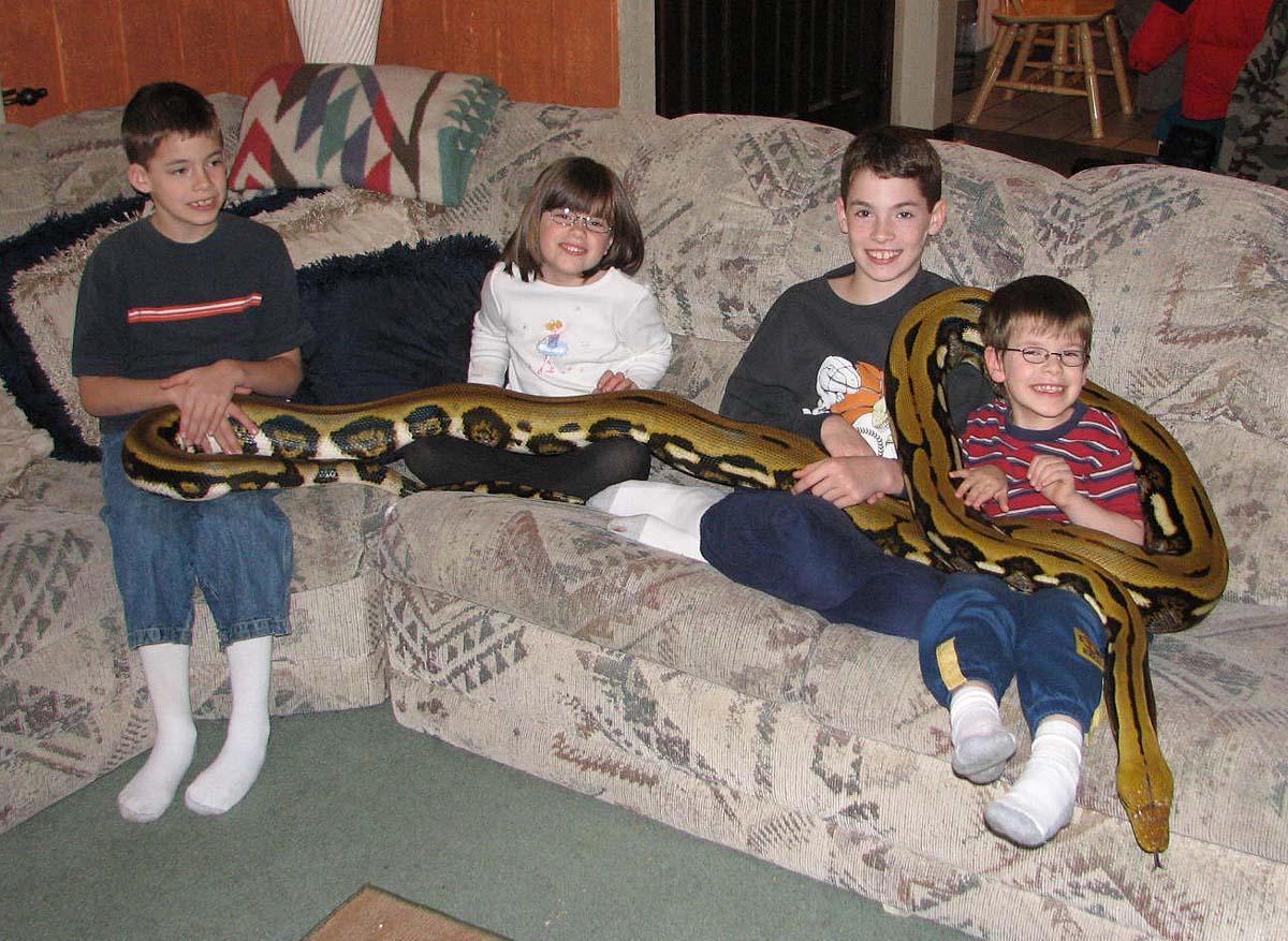 Питоны и дети фото