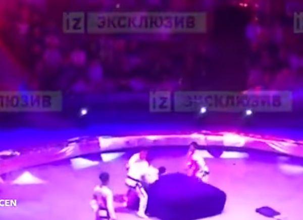 В Северной Корее есть цирковые гимнасты. Точнее - были