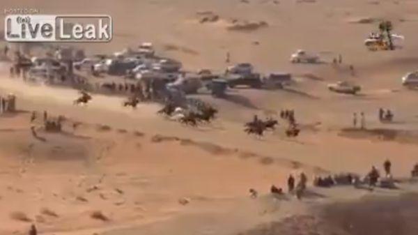 Скачки в пустыне завершились жестоким наездом