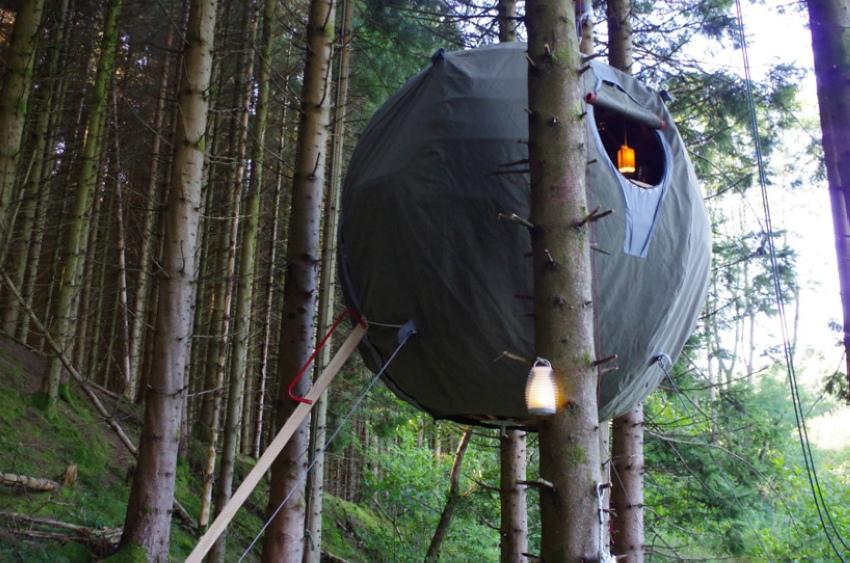 Дом-шар на дереве
