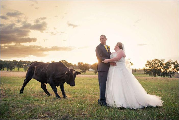 Забавные свадебные фото, которые получились случайно