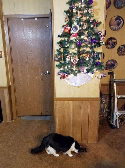 Как защитить новогоднюю елку от домашних животных