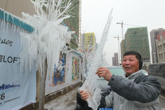 Ледяной дождь сотворил природную инсталляцию