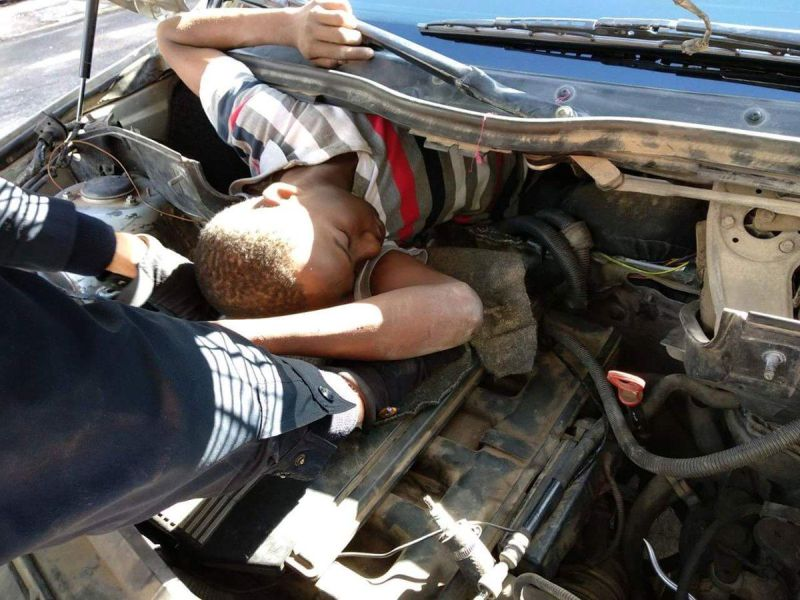Сколько мигрантов может проехать в технических полостях легкового автомобиля?