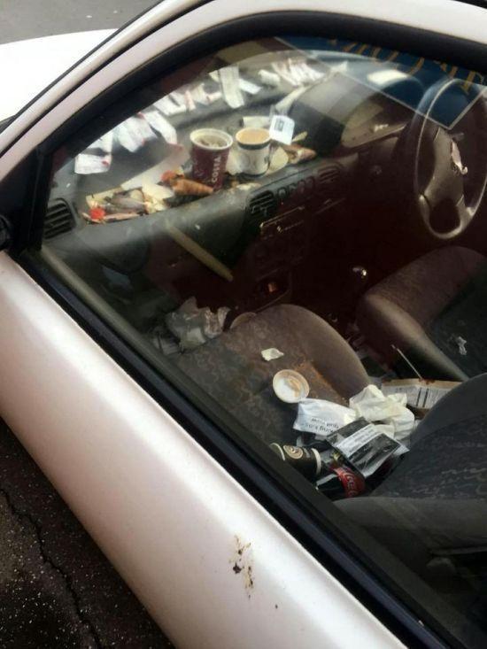 Свинарник на колесах, в котором доставляют пиццу