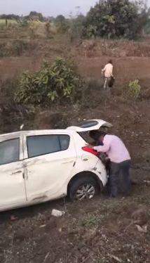 Видеоролик с аварией, в котором больше животных больше, чем людей