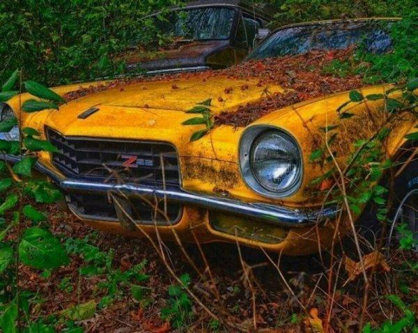 Забытые легенды: 25 фотографий, от которых все автомобилисты схватятся за сердце
