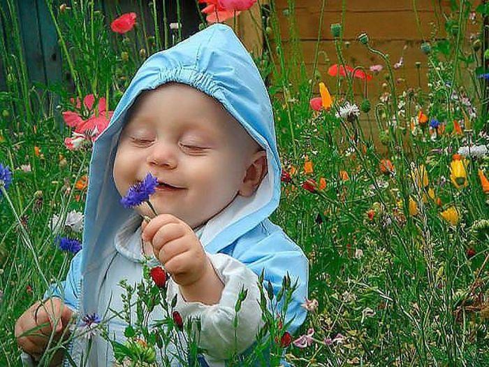 Цветок на носу картинки
