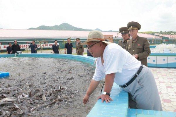 Самый главный ревизор: Ким Чен Ын инспектирует товары и объекты