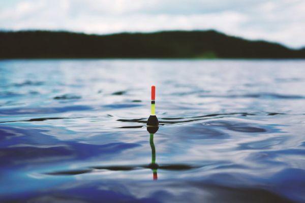 Рыбалка в луже