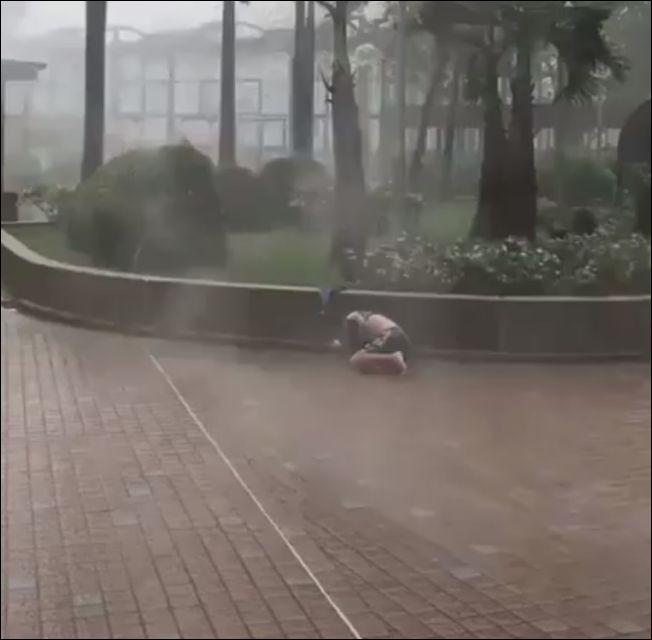 Ветреный день