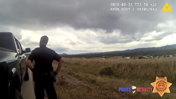 Как работает полиция США