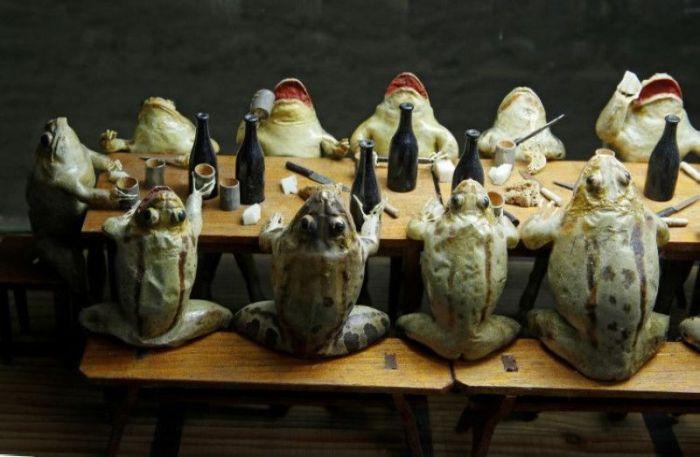 Музей лягушек