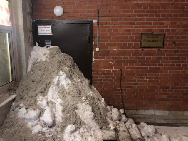 Жители Санкт-Петербурга самостоятельно расчищают дворы от снега
