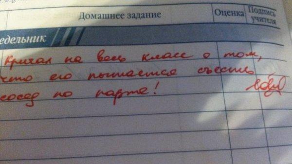 Записи в школьных дневниках и тетрадях юмор