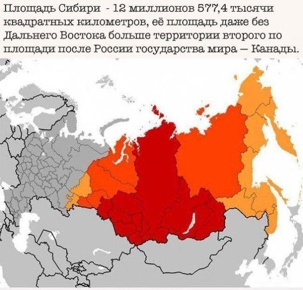 Россия в интересных фактах Всячина