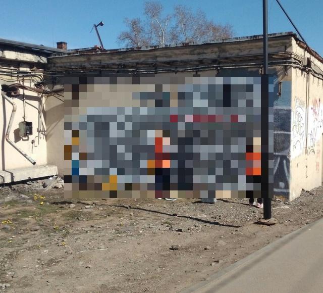 """Рисунок """"Воевака"""" в Ростокино"""