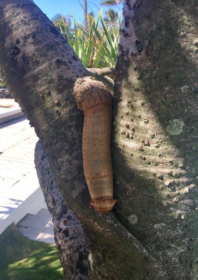 Природа подает нам знаки Всячина
