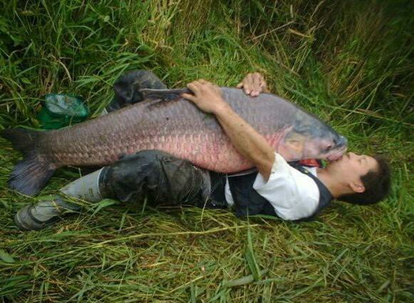 Ох, уж эта рыбалка Юмор