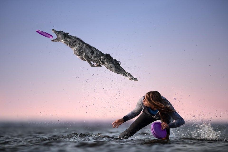 Фотошоперы принялись за пса, который ловит фрисби