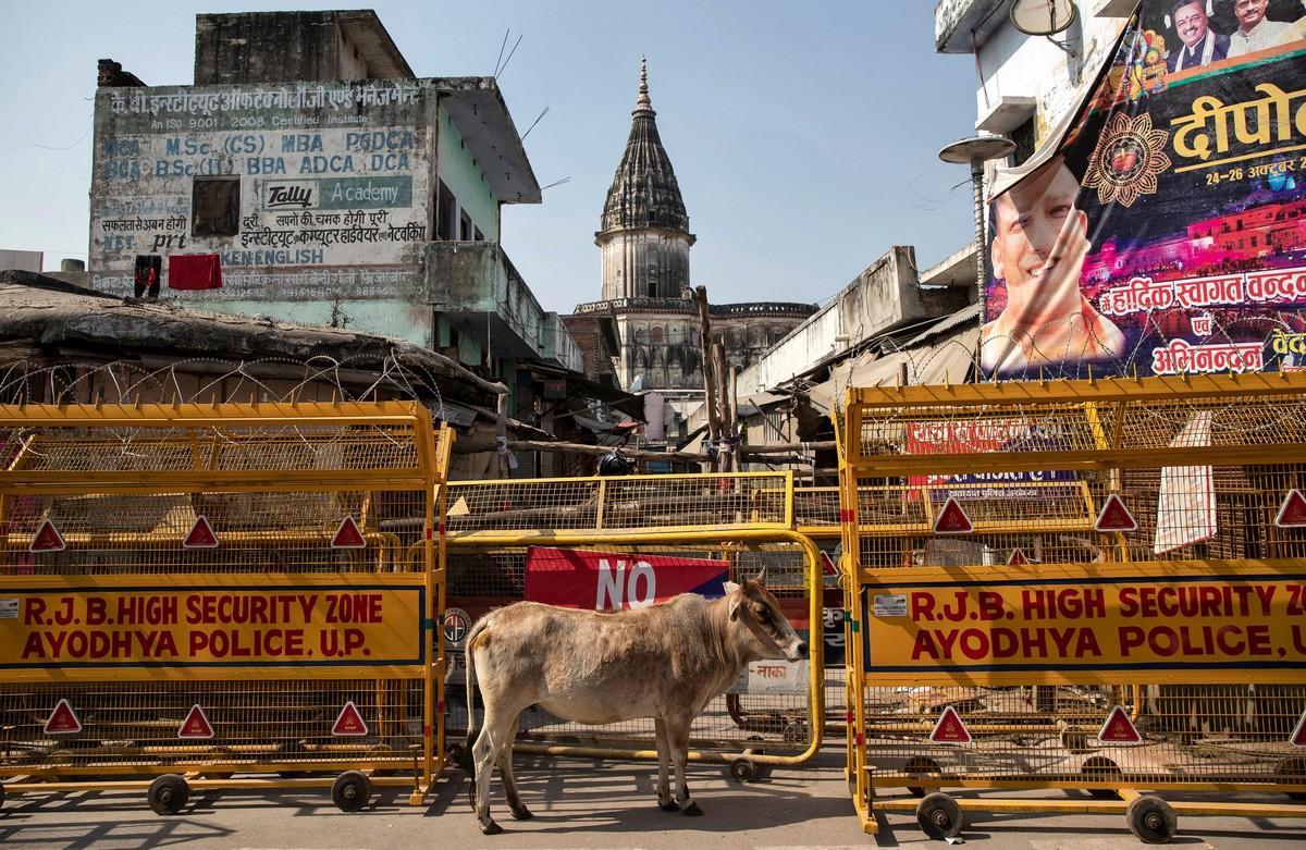 Чарующая Индия - ноябрьские фотографии Всячина