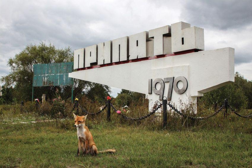 Внутри Чернобыля Всячина